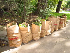 Yard Waste Collection Resumes April 17