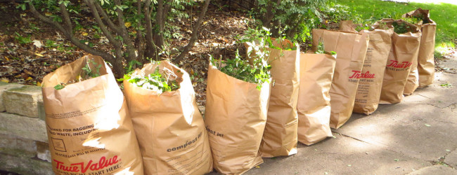 Yard Waste Collection to Begin April 11